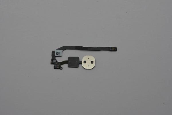 iPhone 5S Fingerprint Back