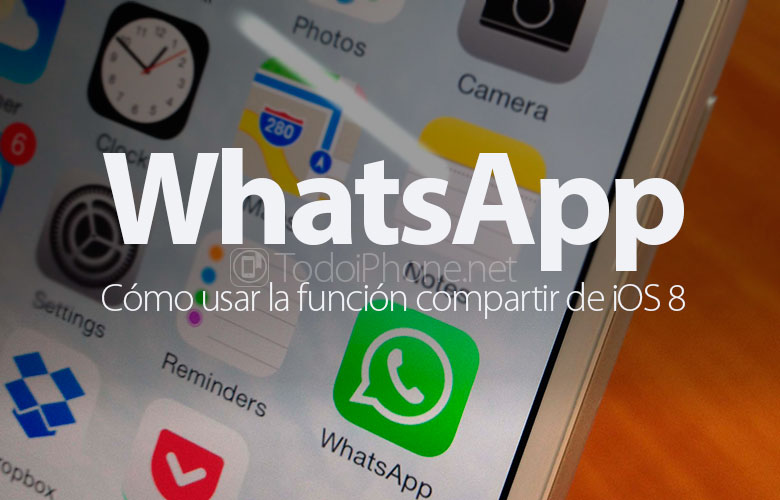 whatsapp-como-usar-funcion-compartir-ios-8