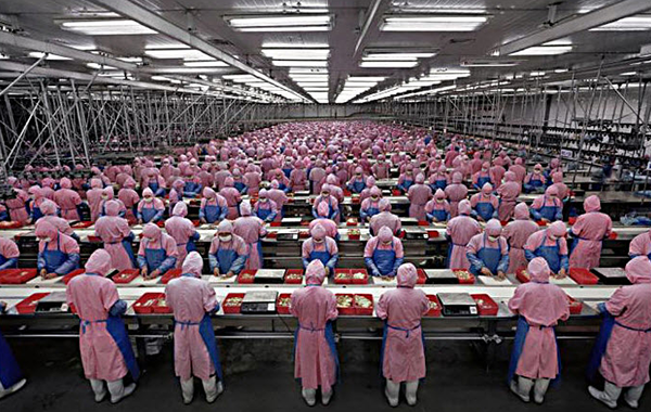 Foxconn Production Line